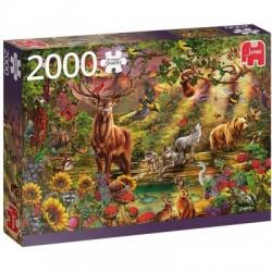 Puzzle 2000pièces - Forêt Enchantée au crépuscule